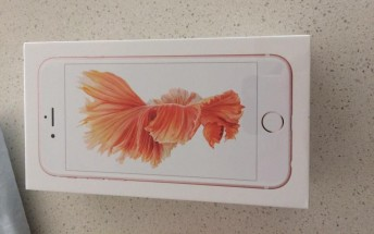 One iPhone 6s gets delivered early, and it benchmarks like a champ