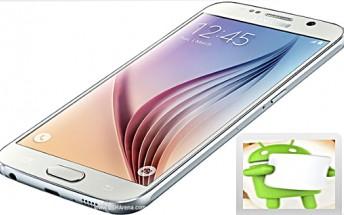 Sprint's Samsung Galaxy S6 starts receiving Marshmallow update