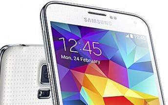 Marshmallow starts hitting Galaxy S5 Plus as well