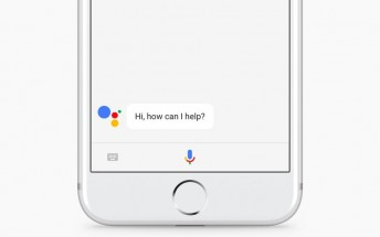 Google Assistant now lets you find local services like plumber and electrician