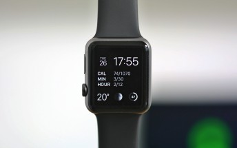 Apple Watch total sales expected to reach 15M this year