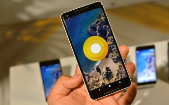 Android 8.1 Developer Preview is now available for Pixels and Nexuses