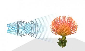 How Light field cameras work