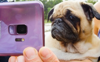 Samsung partners with BuzzFeed and The Dodo to push Galaxy S9 Super Slow-mo videos