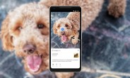 Google Lens will be available in your Android phone's camera app