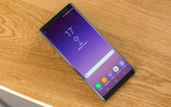 Alleged Galaxy Note9 glass protector shows little design change