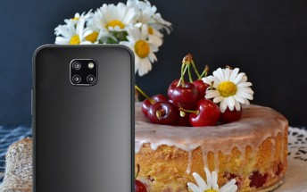 Huawei Mate 20 and Mate 20 Pro will launch with Android 9.0 Pie, says the EEC
