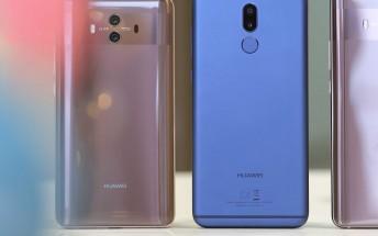Huawei Mate 20 Lite specs shine on TENAA