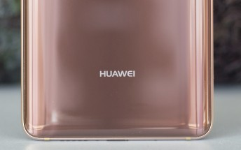 Arrested Huawei CFO granted bail with conditions