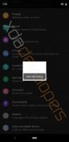The new Developer Options menu