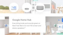 Nest Hub Max details