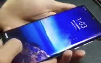 Huawei P30 Pro appears in short video, P30 in a photo