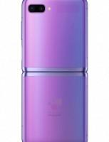 Purple renders