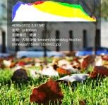 Huawei P40 Pro Premium camera samples