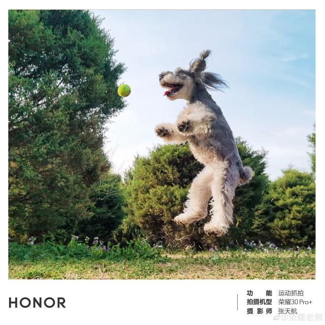 عينة من كاميرا Honor 30 Pro + للتركيز البؤري فائق السرعة