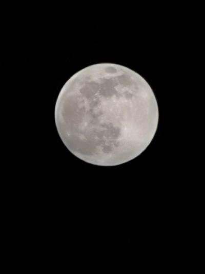 تظهر صور عينات Honor 30 Pro ، تلمح إلى وضع القمر المحتمل