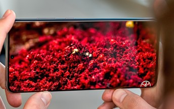 Some Samsung Galaxy S20 Ultra units plagued by a green screen tint
