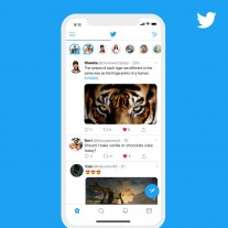 Twitter's new feature, Fleets