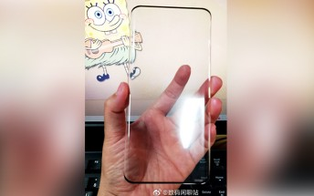 Huawei Mate 40 Pro screen protector reveals first details