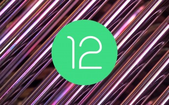 The Android 12 beta is the most downloaded beta in Android history