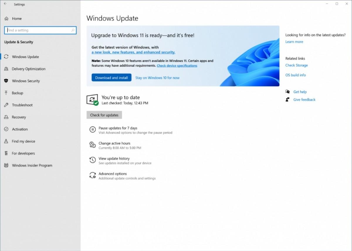 Toleo la Windows 11