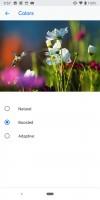 Display modes - Google Pixel 3 review