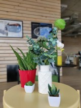 Scene 7: OnePlus 6T - f/1.7, ISO 125, 1/100s - Portrait Modes Compared review