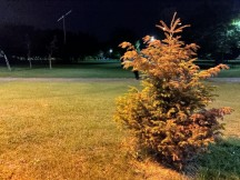 Low-light samples, main camera, 12MP, HDR+ Enhanced - f/1.8, ISO 1718, 1/20s - Asus Zenfone 6 review