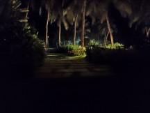 Night mode - f/1.8, ISO 25600, 1/14s - Xiaomi Redmi Note 7 Pro review