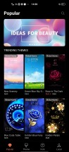 Themes and customizations - vivo X50 Pro review