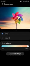 Screen mode color settings - Samsung Galaxy Note20 Ultra long-term review