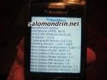 BlackBerry Pearl 9100