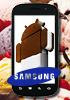 Thank you, Samsung, for confirming Nexus Prime