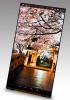 Japan Display unveils 2 QHD smartphone screens