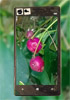 Nokia Lumia 929 sample photos leak