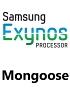 Next Samsung Exynos to pack custom cores